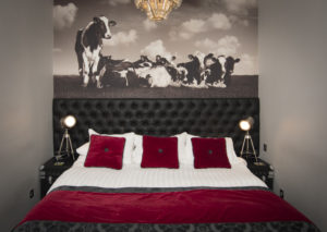 Lazy Cow Room